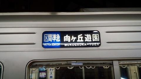 DSC_7372.jpg