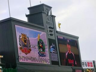 01_甲子園中試合開始前 (5).jpg