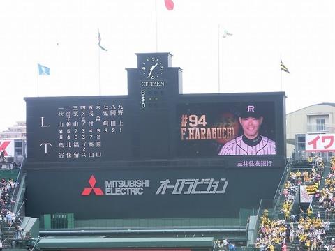 10_甲子園球場試合前 (73).jpg