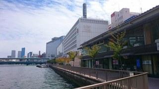 13_水都大阪フェス(あひるちゃん@中之島公園) (61).jpg