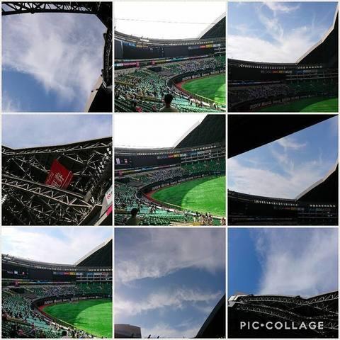 Collage 2017-08-12 20_25_59.jpg