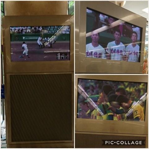 Collage 2017-08-23 18_48_14.jpg