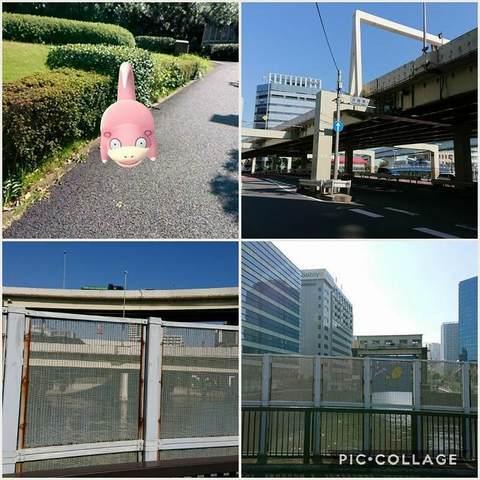 Collage 2017-10-27 11_19_57.jpg