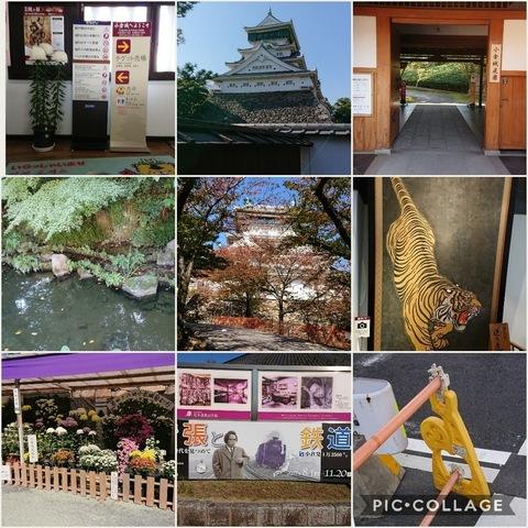 Collage 2017-11-06 19_37_30.jpg