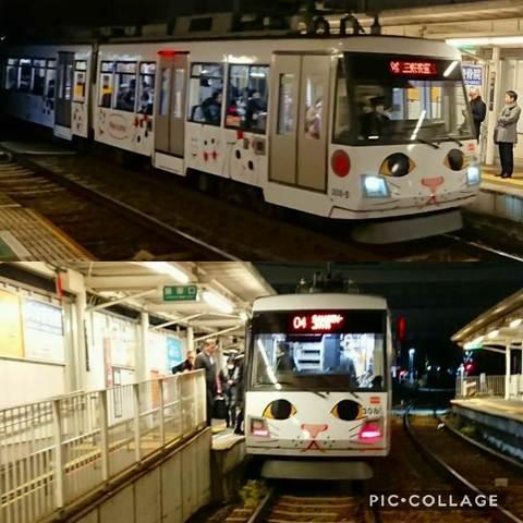 Collage 2017-12-11 19_06_50.jpg