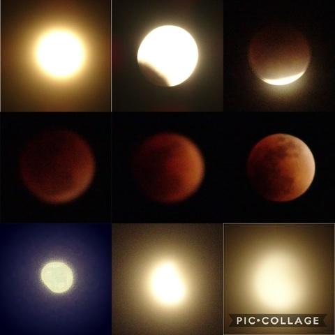Collage 2018-01-31_皆既月食.jpg