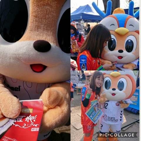 Collage 2018-02-24 ゼイワン開幕 (16).jpg