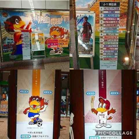 Collage 2018-06-11 04_33_13.jpg