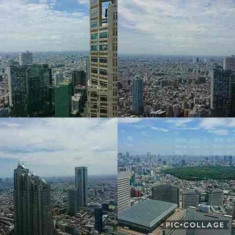 Collage 2018-06-28 12_41_06.jpg