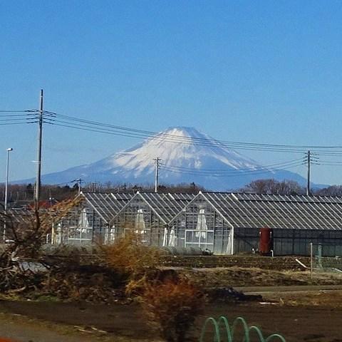 えのしま61号車窓から富士山.jpg