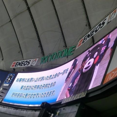 くまモンが東京ドームへ.jpg