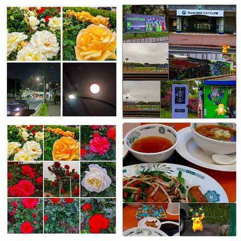 IMG_20200506_163816-EFFECTS-COLLAGE-COLLAGE.jpg