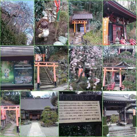 PhotoGrid_20170211_妙圓寺 (1).jpg