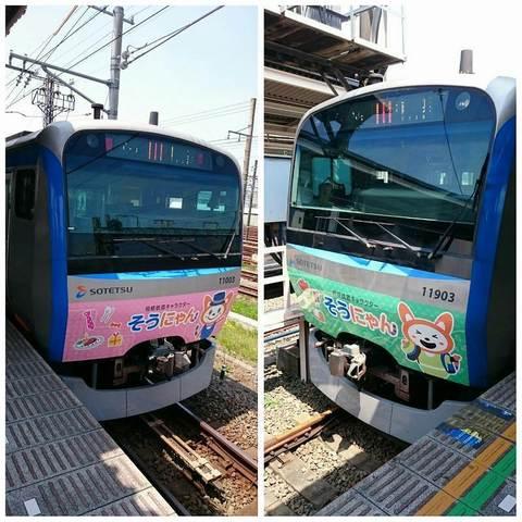 PhotoGrid_そうにゃんトレイン (1).jpg