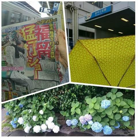 PhotoGrid_家から愛甲石田駅まで.jpg