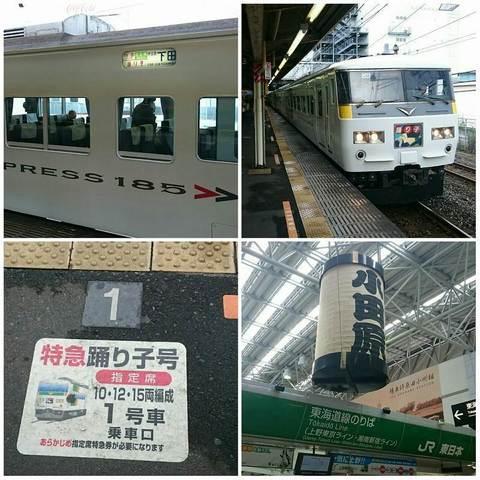 PhotoGrid_小田原にて185系踊り子号.jpg