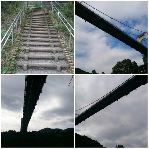 PhotoGrid_戸川公園 (5).jpg