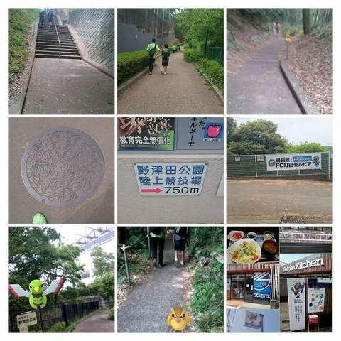 PhotoGrid_野津田登山-COLLAGE (1).jpg